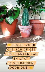 Plantentas
